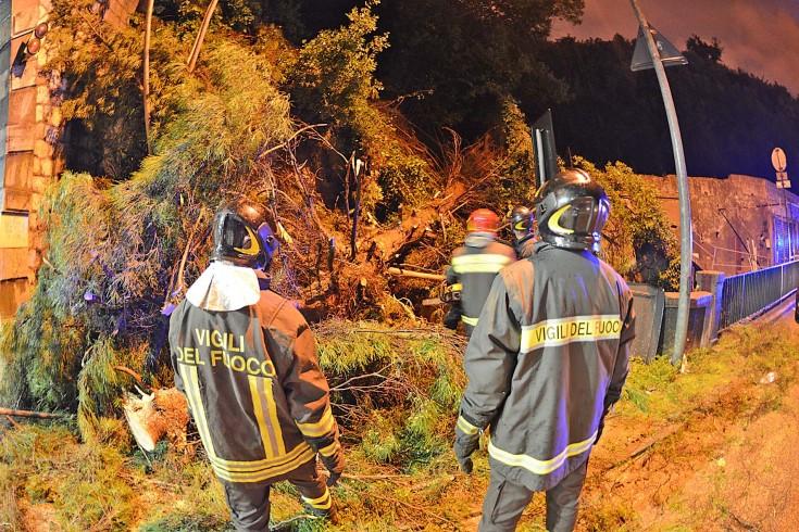 Paura a Sala Abbagnano, cade ramo di pino secolare sulla strada - aSalerno.it