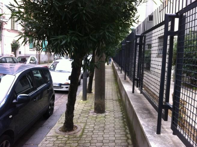Salerno, non è una città per disabili - aSalerno.it
