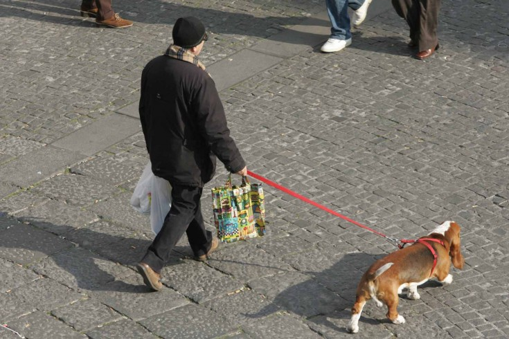 Non raccolgono escrementi dei cani, multa a due padroni a Salerno - aSalerno.it