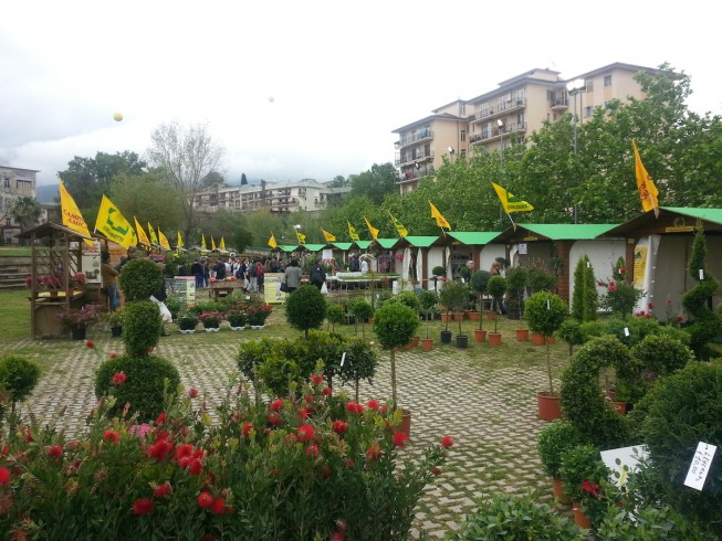 Torna Salerno in Flora, la kermesse dedicata al giardinaggio - aSalerno.it