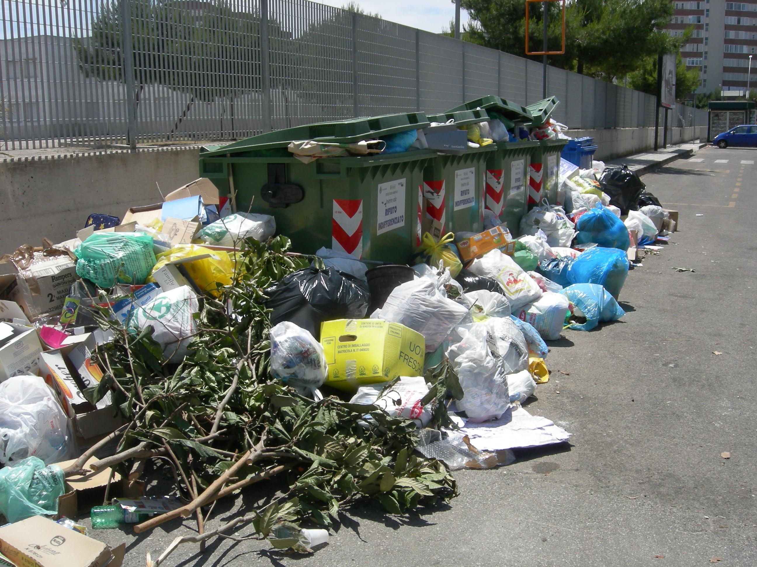 Conferimento illecito di rifiuti il comune attiva la for Conferimento rifiuti