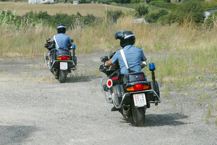 Provava a rubare un quintale di legname: arrestato 60enne nel Cilento - aSalerno.it