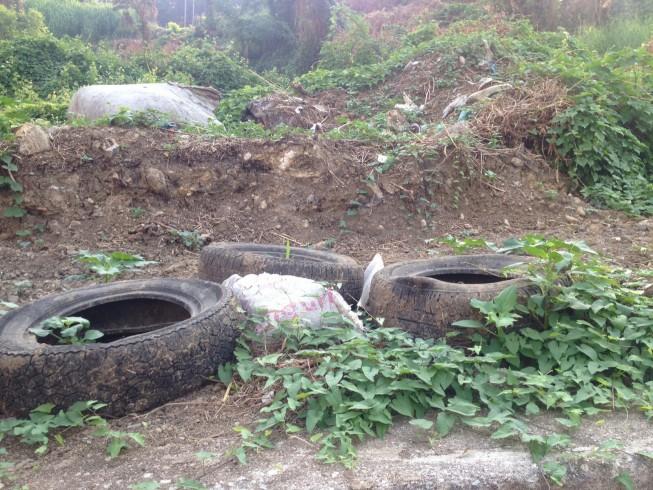 Rione Petrosino, getta la spazzatura su suolo pubblico, multata - aSalerno.it