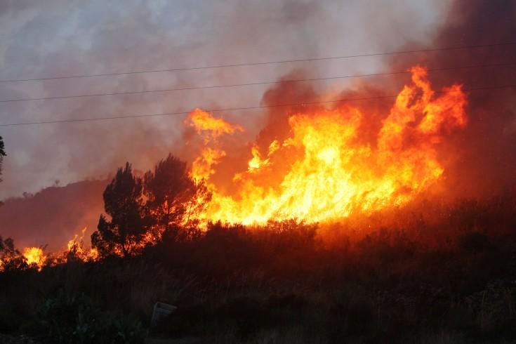 Incendi minacciano Cilento, Valle dell'Irno e Costiera Amalfitana - aSalerno.it