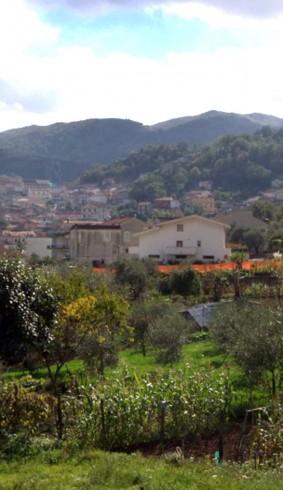 Giallo a Monte San Giacomo, donna trovata ferita nel suo appartemento - aSalerno.it