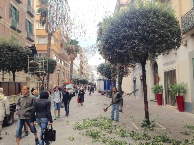 Salerno si prepara al Natale, potatura degli alberi sul corso - aSalerno.it