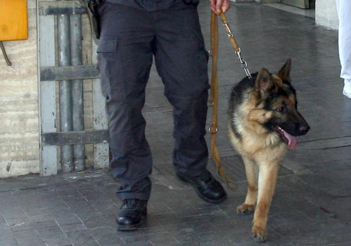 Maxi sequestro di droga e armi a Pagani: irruzione della polizia in un garage - aSalerno.it