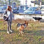 Cani01