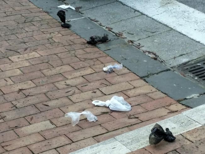Inciviltà sul trincerone: abbandonano deiezioni canine lungo la strada - aSalerno.it