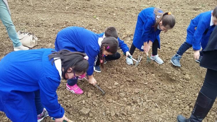 Parco Nazionale del Cilento, 200 bambini studiano la filiera corta - aSalerno.it
