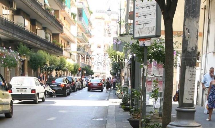 Non raccoglie deiezioni del cane, multato in via Carmine - aSalerno.it
