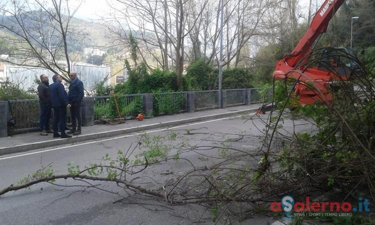 LE FOTO – Costone roccioso a Fratte, l'intervento per la messa in sicurezza - aSalerno.it