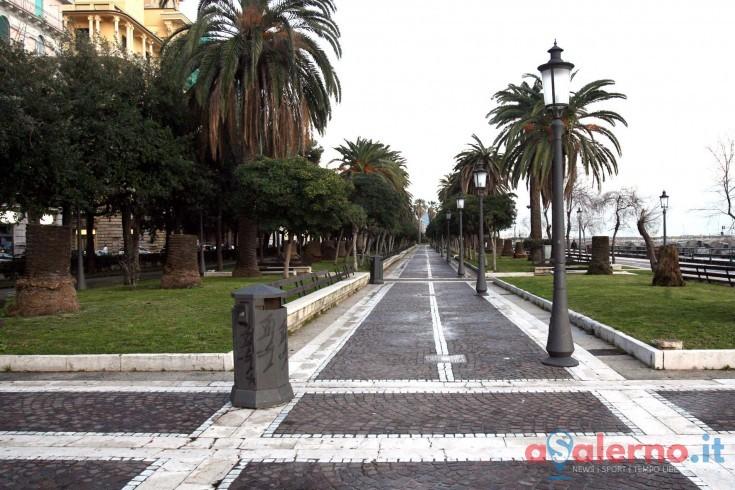 Affidato appalto sulle analisi agli alberi di Salerno, pronte verifiche su vita e salute - aSalerno.it