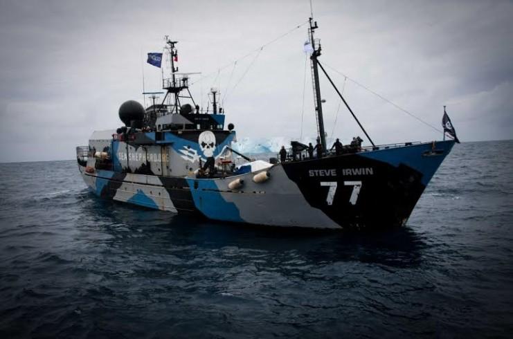"""Serata benefit per gli Oceani al """"LuNa Vegana"""" con i Sea Shepherd - aSalerno.it"""