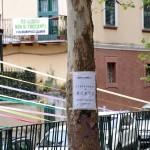 PiazzaAlario21
