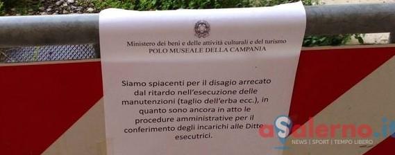 Certosa di Padula tra erba alta e bagni rotti, disagi per i turisti - aSalerno.it