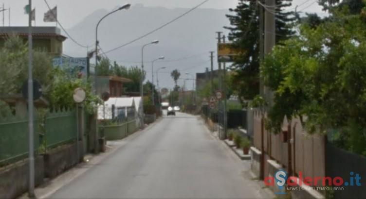 Blitz in un fondo agricolo a Scafati: 41 piante di cannabis alte 2 metri - aSalerno.it