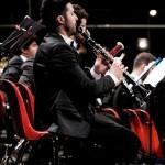 dettaglio_orchestra_arena