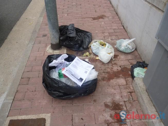"""Degrado nel centro storico, Minoliti: """"Necessaria una squadra speciale per la pulizia"""" - aSalerno.it"""