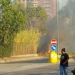 Incendio (7)