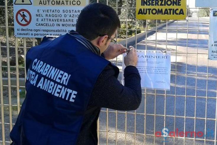 Blitz dei Carabinieri nel Cilento, sotto sequestro azienda zootecnica - aSalerno.it