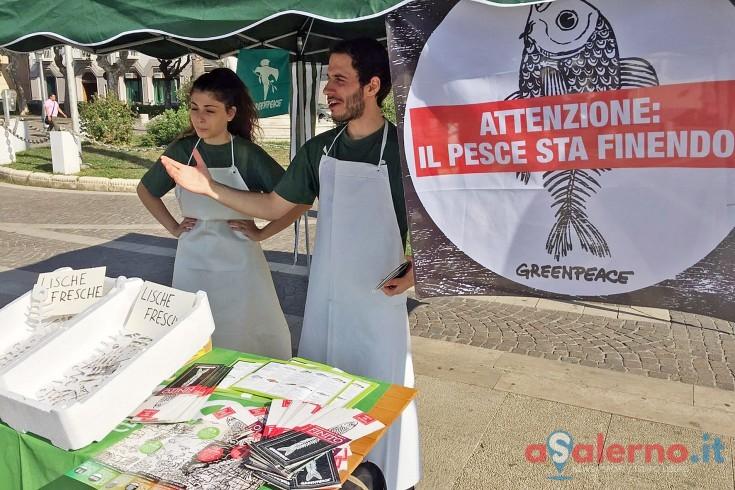 """Volontari di Greenpeace a Salerno: """"Il pesce sta finendo!"""" - aSalerno.it"""