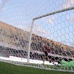 38-gol-rosina