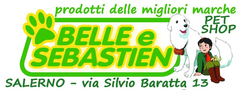 belle-e-sebastien-banner-304x150