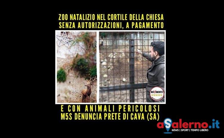 Animali esposti al Santuario di Cava, blitz dei Carabinieri dopo denuncia del M5s - aSalerno.it