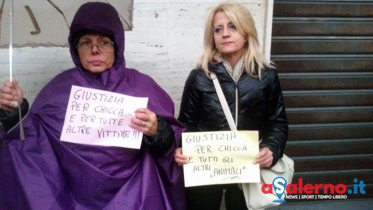 Uccise la cagnolina Chicca, inizia il processo: sit-in a Salerno - aSalerno.it