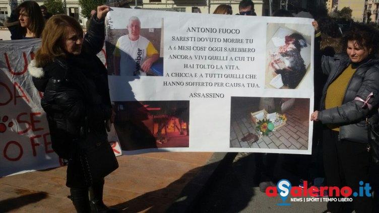 """Salerno in piazza per Chicca: """"Chi uccide un animale non è un uomo"""" – LE FOTO - aSalerno.it"""