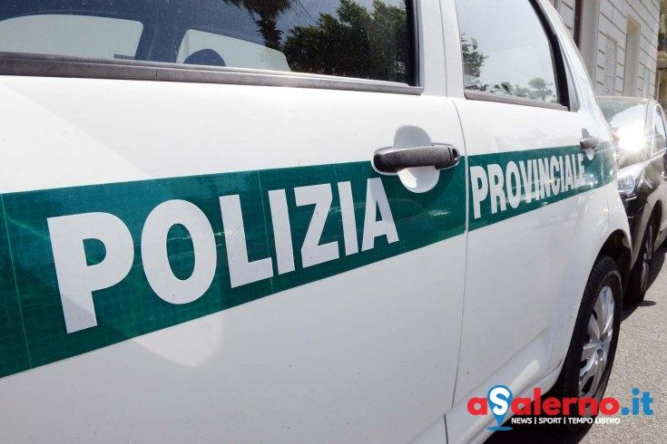"""Rabbia sindacati: """"In Polizia Provinciale atteggiamenti ai limiti del mobbing"""" - aSalerno.it"""