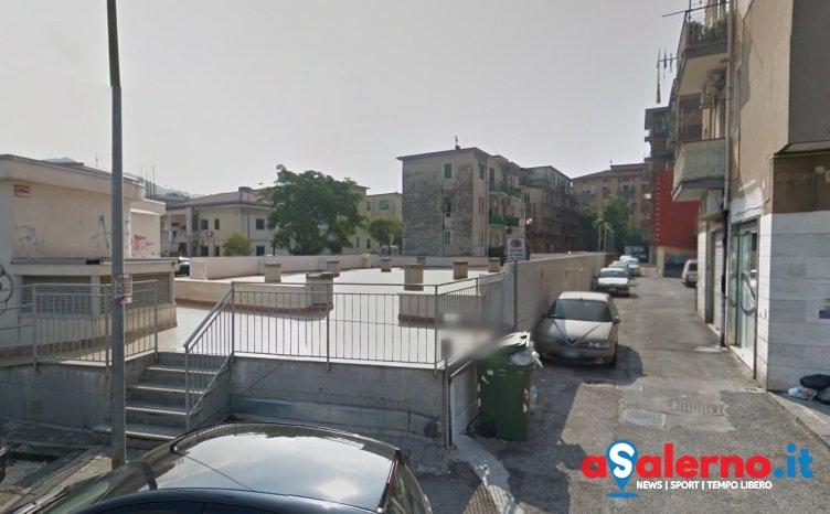 Individuato l'uomo che ha massacrato il cane a Pastena, è un 60enne - aSalerno.it