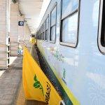 Treno verde17