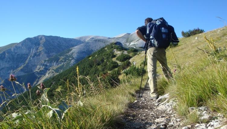 Castel San Lorenzo, escursionista bloccata a mille metri d'altezza - aSalerno.it