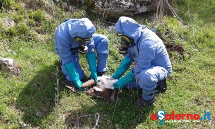 Disinnescato ordigno esplosivo a caricamento chimico in provincia di Salerno - aSalerno.it