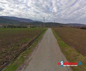 località bosco albanella