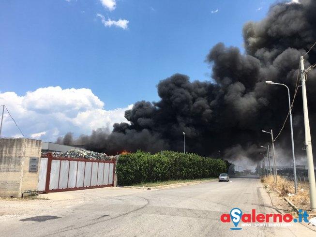Incendio a Battipaglia, paura per danni ai campi: agricoltori chiedono controlli - aSalerno.it