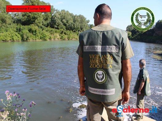Scarichi inquinanti nei pressi del fiume Sele: interviene l'accademia Kronos - aSalerno.it