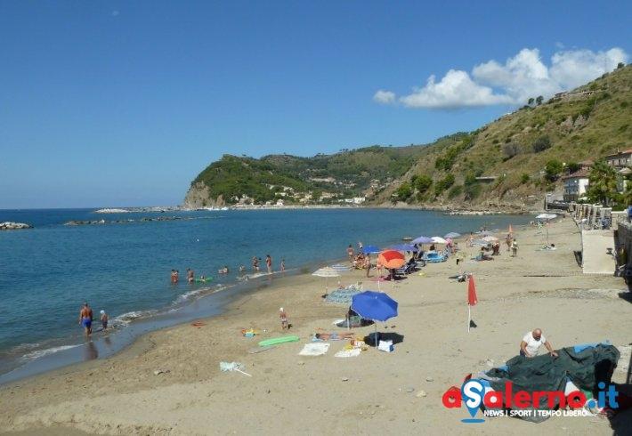 Punta da ape in spiaggia: turista accusa malore - aSalerno.it