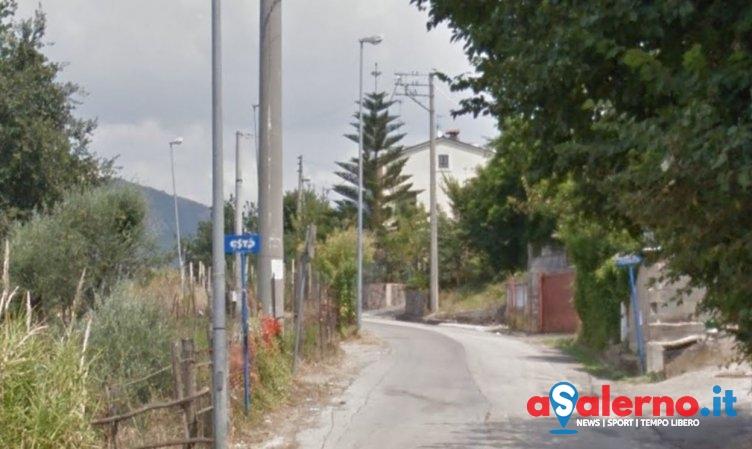 Controlli contro maltrattamenti animali: tre microchip a cuccioli a Brignano - aSalerno.it