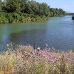 degrado fiume sele1