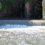 degrado fiume sele5
