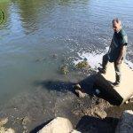 degrado fiume sele6