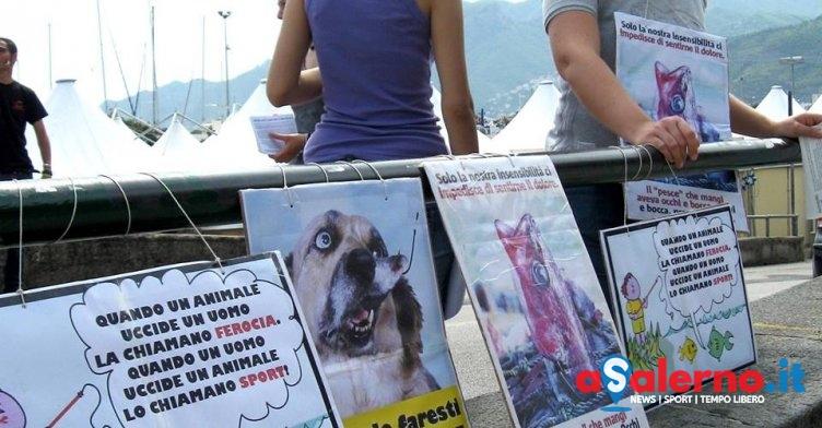 Pesca sportiva a Salerno, Veg in Campania annuncia presidio di sensibilizzazione - aSalerno.it