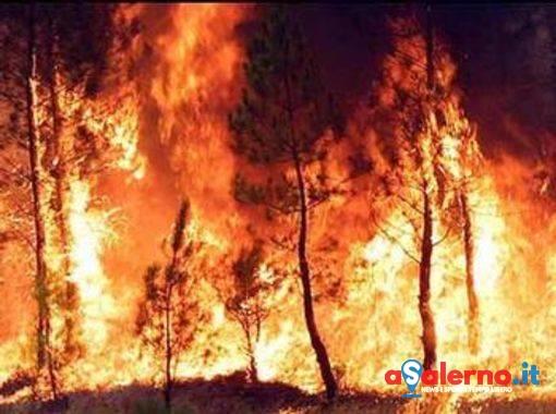 Emergenza incendi a Salerno, 16 roghi in poco più di 48 ore - aSalerno.it