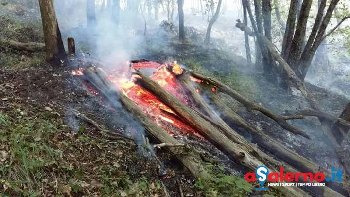Vasto incendio nel parco Diecimare sul lato di Cava - aSalerno.it