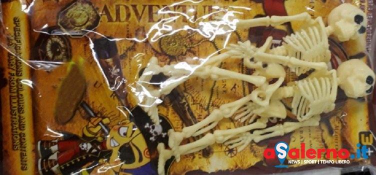 Zucca taroccata: scatta il sequestro per Halloween – LE FOTO - aSalerno.it