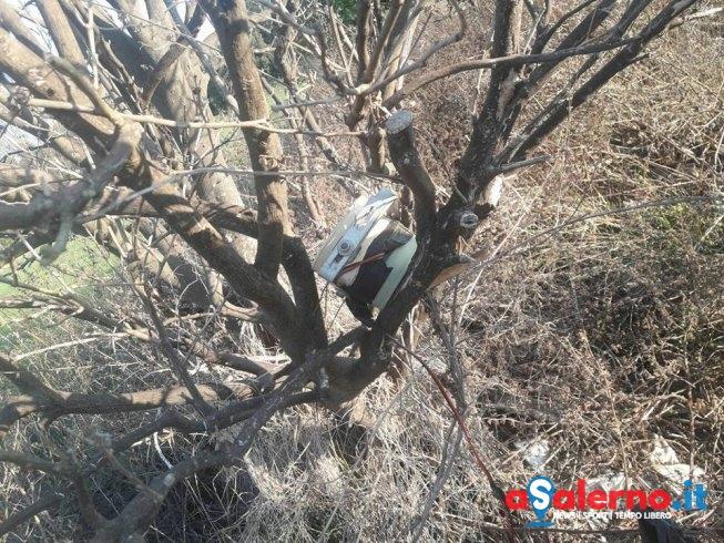 Caccia alla Quaglia, blitz dell'Enpa nella riserva del fiume Sele: denunciati 3 uomini - aSalerno.it