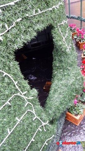 Cava: due ragazzini cercano di arrampicarsi sull'albero di Natale e lo danneggiano – LE FOTO - aSalerno.it